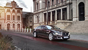 Fotos Jaguar Bordeauxrot Metallisch 2019 XJ50 Autos