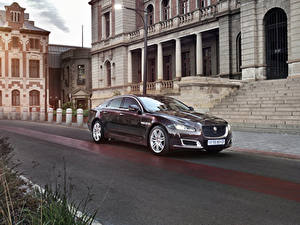 Fotos Jaguar Bordeauxrot Metallisch 2019 XJ50 Autos