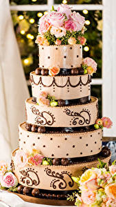 Fotos Feiertage Süßigkeiten Torte Rosen Design Lebensmittel