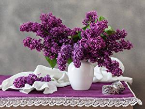 Bilder Syringa Vase Ast Tisch Blumen
