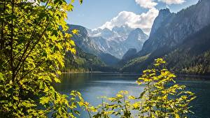 Photo Austria Mountains Lake Landscape photography Branches Cliff Dachstein, Gosausee, Gosau