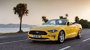 Image Ford Cabriolet Yellow Metallic Mustang GT Convertible, UK-spec, 2018-- auto