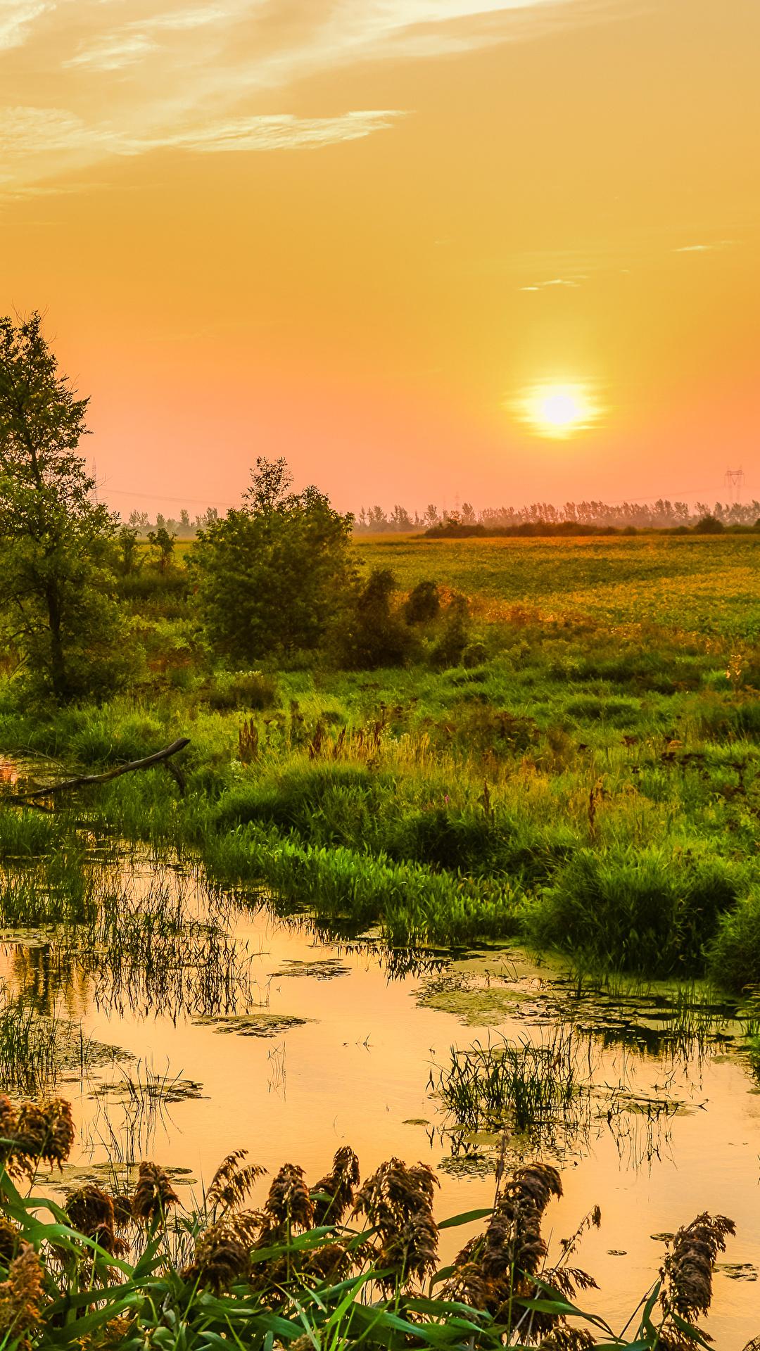 Bilder Natur Kanada Gras Sonne Quebec Sonnenaufgänge und Sonnenuntergänge Sumpf 1080x1920