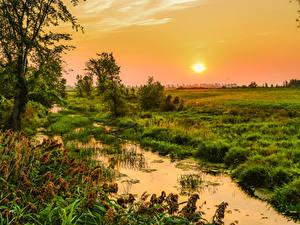 Bilder Kanada Sonnenaufgänge und Sonnenuntergänge Quebec Sumpf Gras Sonne Natur