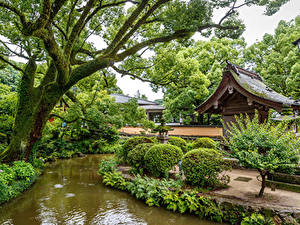 Bilder Singapur Park Teich Bäume Strauch