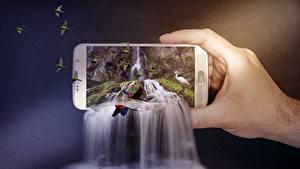 Bilder Wasserfall Papageien Kreativ Smartphone Hand Natur