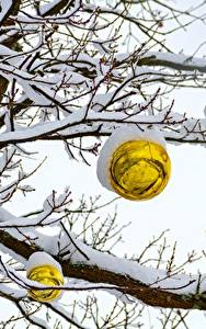 Wallpaper Winter Snow Branches Balls