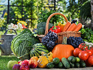 Hintergrundbilder Obst Gemüse Gurke Kürbisse Wassermelonen Weintraube Tomate Kohl