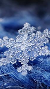Fotos Großansicht Makro Schneeflocken