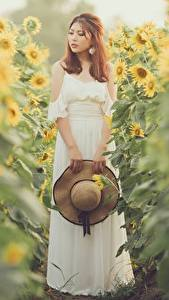 Pictures Helianthus Asiatic Bokeh Gown Hat female