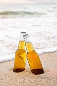 Bilder Bier Meer Flaschen Zwei Schaum Sand Lebensmittel