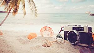 Hintergrundbilder Sommer Muscheln Meer Strand Sand Fotoapparat