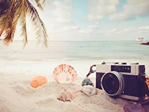 Hintergrundbilder Sommer Muscheln Meer Strand Sand Fotoapparat Natur