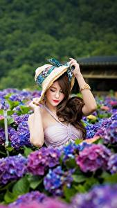 Bilder Hortensien Asiaten Bokeh Der Hut Hand junge frau
