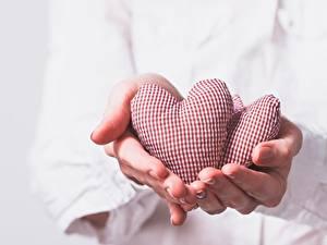 Papéis de parede Dedos da mão Dia dos Namorados Coração Mão