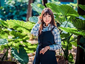 Hintergrundbilder Asiatisches Lächeln Starren Braunhaarige Mädchens