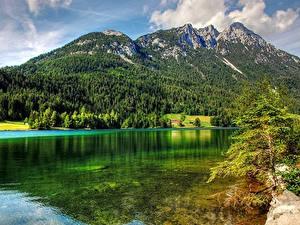 Bilder Gebirge Wälder See Österreich Landschaftsfotografie
