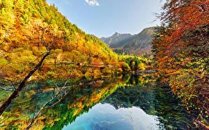 Sfondi desktop Valle del Jiuzhaigou Cina Parco Autunno Foreste Lago Natura