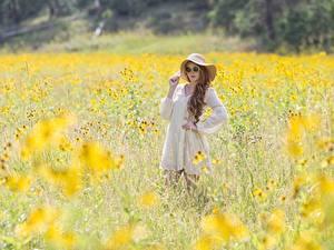 Fotos Sommer Gras Unscharfer Hintergrund Braune Haare Brille Der Hut Kleid junge frau