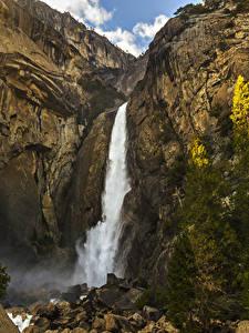 Bilder Vereinigte Staaten Park Wasserfall Steine Yosemite Felsen Fichten Natur