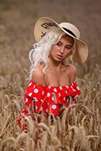 Fotos Felder Weizen Blond Mädchen Model Spitzen Der Hut Kleid Schöne Margo, Dmitry Medved junge frau