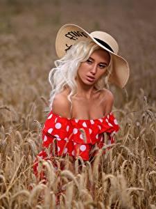 Fotos Felder Weizen Blond Mädchen Model Spitzen Der Hut Kleid Schöne Margo, Dmitry Medved