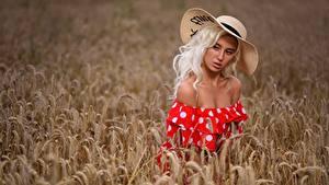 Fotos Acker Weizen Blondine Model Ähren Der Hut Kleid Schöne Margo, Dmitry Medved