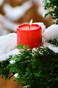 Fotos Winter Kerzen Flamme Schnee Ast