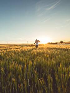 Hintergrundbilder Morgendämmerung und Sonnenuntergang Felder Mädchens