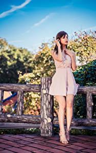 Bilder Asiatische Zaun Bein Kleid Braunhaarige Mädchens