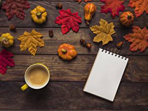 Bilder Herbst Kürbisse Kaffee Bretter Blattwerk Tasse Notizblock