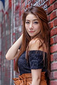 Bilder Asiatisches Braunhaarige Wand Aus Ziegel Blick Unscharfer Hintergrund