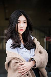 Fotos Asiaten Unscharfer Hintergrund Brünette Haar Starren Sweatshirt