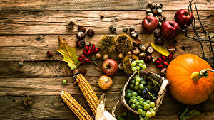 Fotos Kürbisse Weintraube Äpfel Kukuruz Bretter Weidenkorb