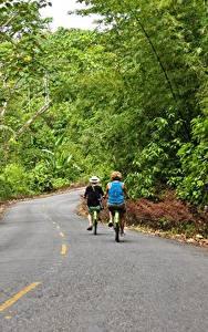 Bilder Straße Wälder Asphalt Fahrräder Zwei Bocas Del Toro, Panama Natur