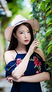 Hintergrundbilder Asiatisches Strauch Bokeh Der Hut Brünette Starren Hand Mädchens