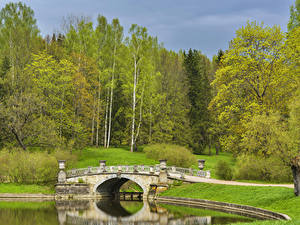 Bilder Russland Sankt Petersburg Park Flusse Brücken Bäume Pavlovsk