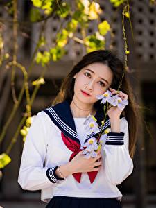 Fotos Asiatisches Bluse Krawatte Schülerin Starren Mädchens