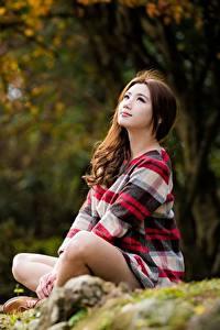 Bilder Asiatische Sitzt Bokeh Braune Haare junge Frauen