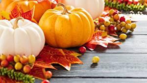 Fotos Kürbisse Herbst Bretter Lebensmittel
