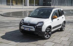 Bilder Fiat Weiß 2019 Panda connected by Wind Autos
