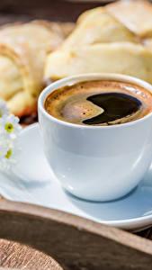 Bilder Kaffee Kamillen Backware Tasse Untertasse Lebensmittel