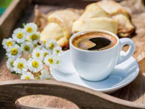 Bilder Kaffee Kamillen Backware Tasse Untertasse