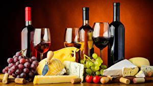 Bilder Stillleben Wein Trauben Käse Zitrone Tomaten Farbigen hintergrund Flaschen