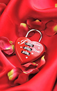 Bilder Valentinstag Rot Herz Blütenblätter Vorhängeschlösser