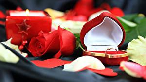 Papéis de parede Dia dos Namorados Rosas Vermelho Coração Caixa Anel de joias Flores