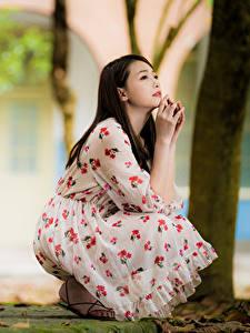 Hintergrundbilder Asiaten Unscharfer Hintergrund Posiert Sitzt Kleid Braune Haare