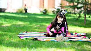 Fotos Katze Krone Kleine Mädchen Uniform Sitzt Starren Kinder