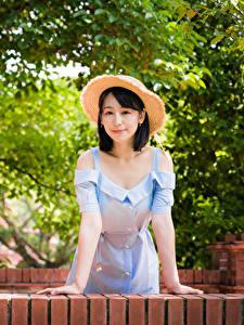Bilder Asiatische Posiert Kleid Hand Der Hut Brünette Mädchens
