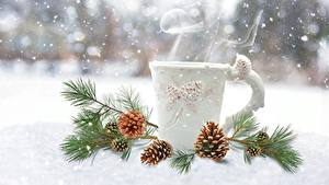 Fotos Winter Schnee Zapfen Ast Becher Dampf